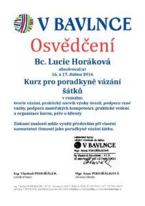 Osvedceni Horakova-page-001